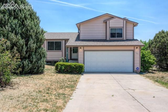 101 Blossom Field Court, Fountain, CO 80817 (#9654246) :: 8z Real Estate