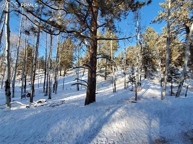 147 W Arrowhead Road, Florissant, CO 80816 (#9658120) :: Compass Colorado Realty