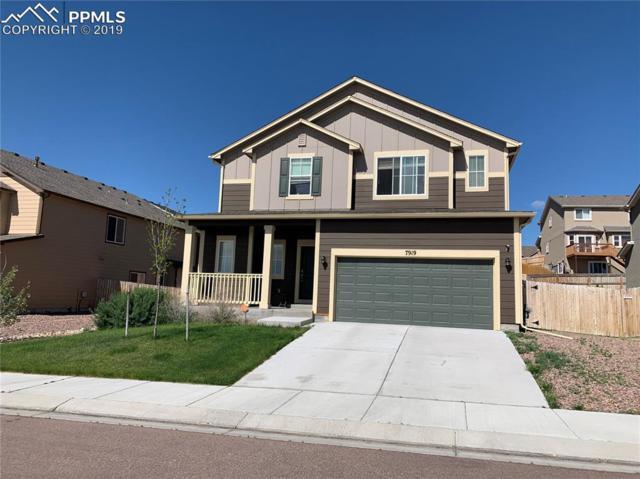 7919 Dutch Loop, Colorado Springs, CO 80925 (#9658829) :: Action Team Realty