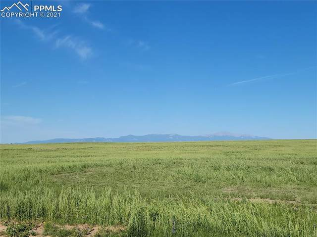 3235 Antelope Hill View, Calhan, CO 80808 (#9660718) :: The Kibler Group