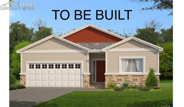 7366 Bigtooth Maple Drive, Colorado Springs, CO 80925 (#9660757) :: Action Team Realty