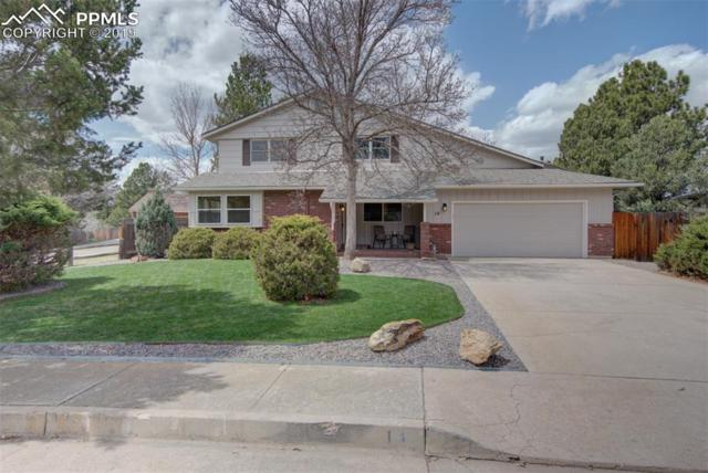14 Raven Hills Court, Colorado Springs, CO 80919 (#9660935) :: Jason Daniels & Associates at RE/MAX Millennium