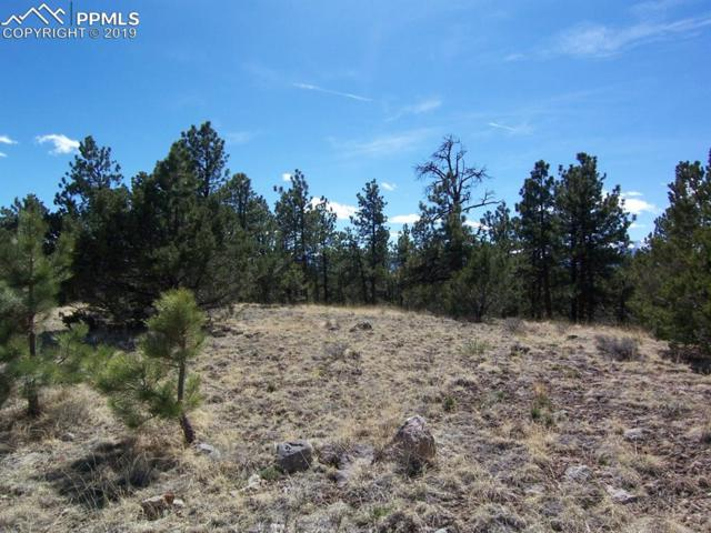 TBD County 29 Road, Cotopaxi, CO 81223 (#9661405) :: Jason Daniels & Associates at RE/MAX Millennium