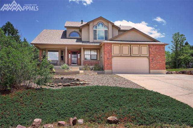 14485 River Oaks Drive, Colorado Springs, CO 80921 (#9661615) :: CENTURY 21 Curbow Realty