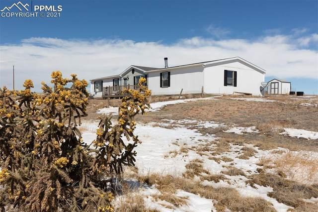 21395 Oak View Road, Fountain, CO 80817 (#9662602) :: Venterra Real Estate LLC