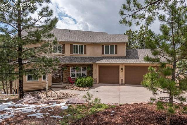 16020 Cliffrock Court, Colorado Springs, CO 80921 (#9663035) :: The Daniels Team