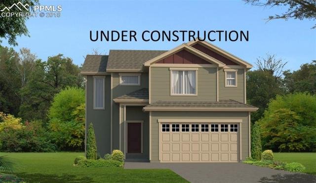 11524 Ducal Point, Colorado Springs, CO 80831 (#9663282) :: Action Team Realty