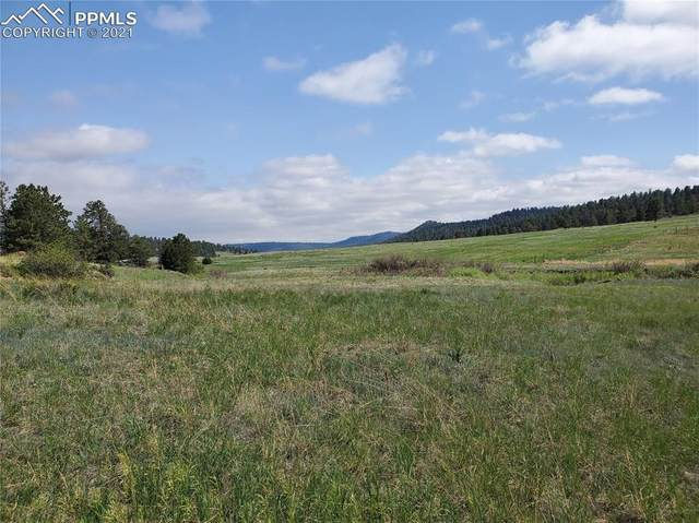 466 Spring Valley Drive, Florissant, CO 80816 (#9664602) :: Symbio Denver