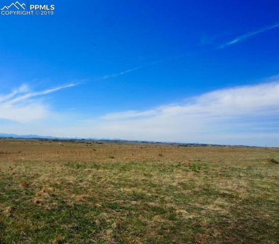 43010 Ptarmigan Road, Parker, CO 80138 (#9668988) :: 8z Real Estate