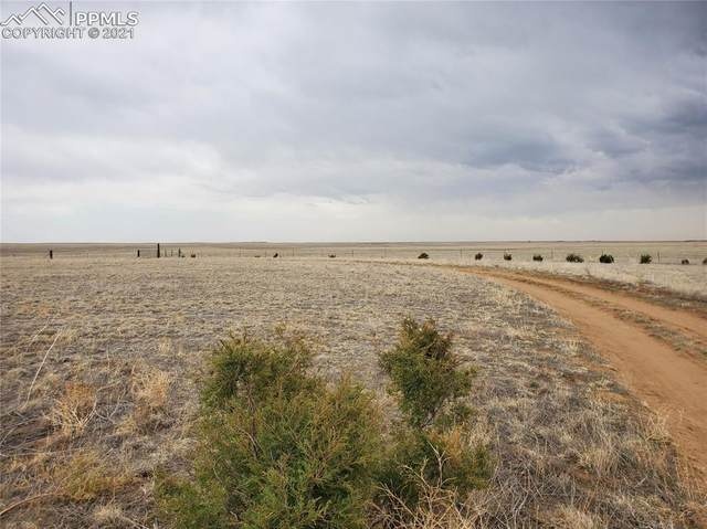 46850 County Road 46, Limon, CO 80828 (#9670951) :: Fisk Team, RE/MAX Properties, Inc.