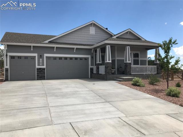 1702 Willow Park Way, Monument, CO 80132 (#9677468) :: Harling Real Estate