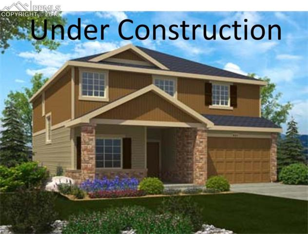 7897 Luminary Lane, Fountain, CO 80249 (#9677727) :: Venterra Real Estate LLC