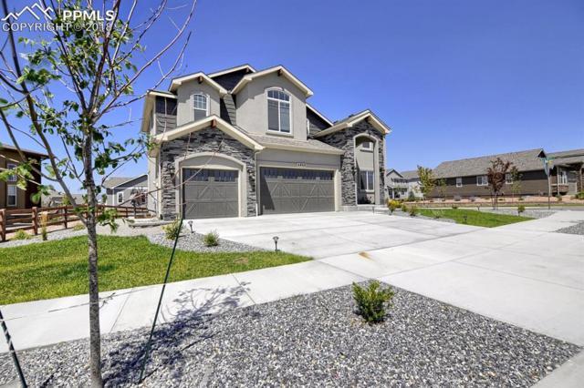6868 Black Saddle Drive, Colorado Springs, CO 80924 (#9678427) :: Jason Daniels & Associates at RE/MAX Millennium