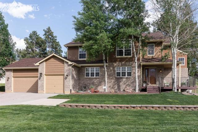 1258 Buffalo Grass Place, Elizabeth, CO 80107 (#9679611) :: 8z Real Estate