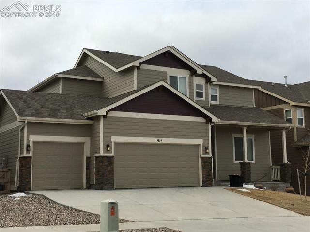 915 Pistol River Way, Colorado Springs, CO 80921 (#9688061) :: Colorado Home Finder Realty