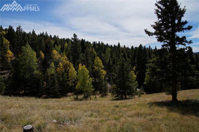 3255 Elk Valley Road, Divide, CO 80814 (#9689753) :: 8z Real Estate