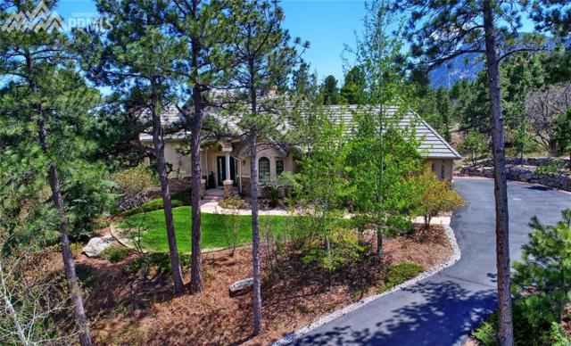 2155 Stratton Forest Heights, Colorado Springs, CO 80906 (#9693875) :: Jason Daniels & Associates at RE/MAX Millennium