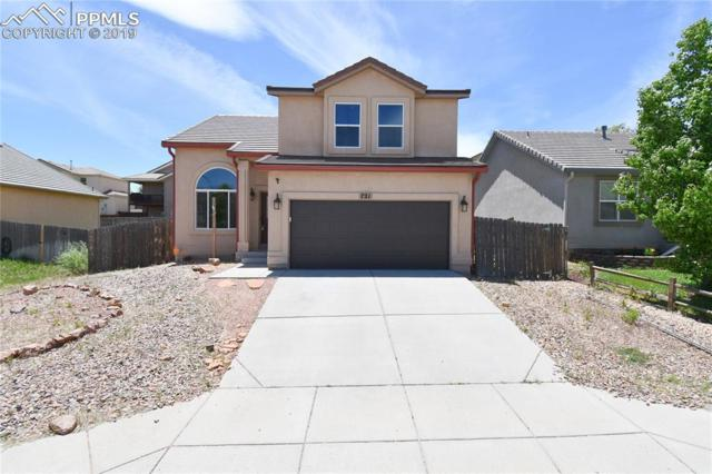 721 Harvest Field Way, Fountain, CO 80817 (#9694097) :: The Treasure Davis Team