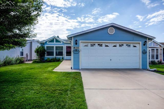 4144 Gray Fox Heights, Colorado Springs, CO 80922 (#9695114) :: The Daniels Team