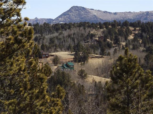 940 May Queen Drive, Cripple Creek, CO 80813 (#9700068) :: 8z Real Estate