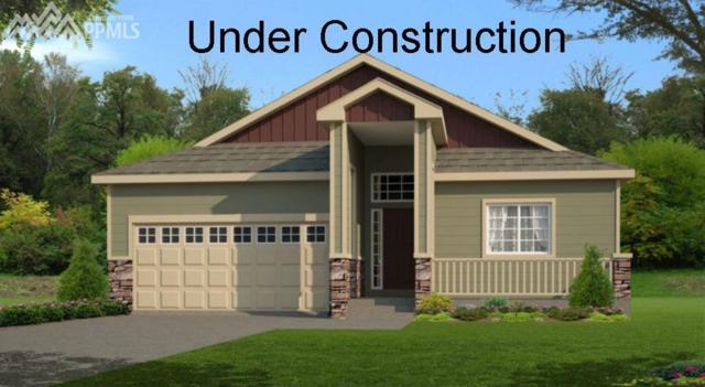 9712 Wando Drive, Colorado Springs, CO 80925 (#9700654) :: Jason Daniels & Associates at RE/MAX Millennium