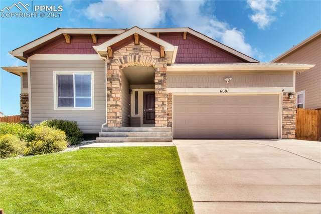 6691 Van Winkle Drive, Colorado Springs, CO 80923 (#9703591) :: Tommy Daly Home Team