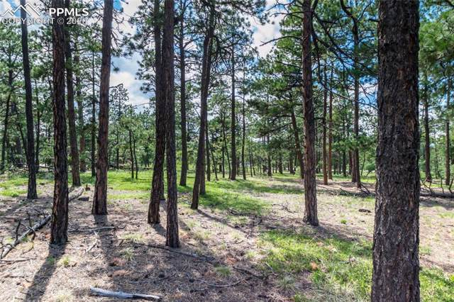 19365 Hilltop Pines Path, Monument, CO 80132 (#9705019) :: Action Team Realty