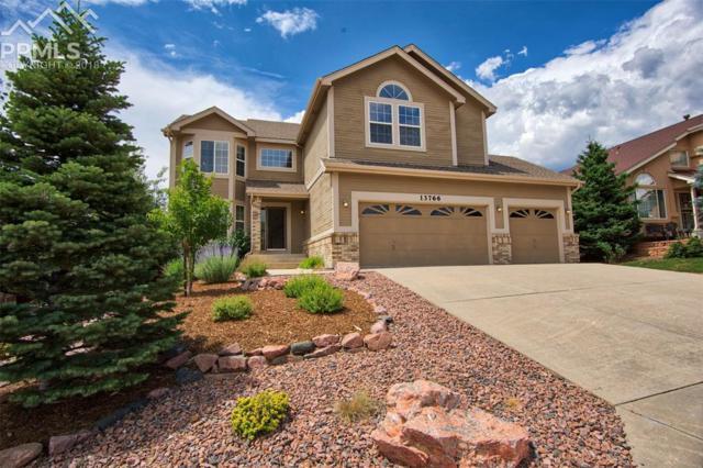 13766 Narrowleaf Drive, Colorado Springs, CO 80921 (#9707795) :: Action Team Realty