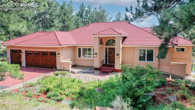 9630 S Perry Park Road, Larkspur, CO 80118 (#9708061) :: Action Team Realty