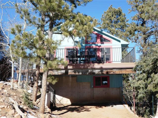 9910 Mountain Road, Cascade, CO 80809 (#9711884) :: The Peak Properties Group