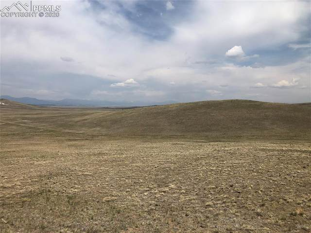 00 Wicaka Trail, Guffey, CO 80820 (#9715603) :: Finch & Gable Real Estate Co.