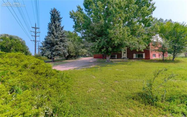7433 Grashio Drive, Colorado Springs, CO 80920 (#9718035) :: 8z Real Estate