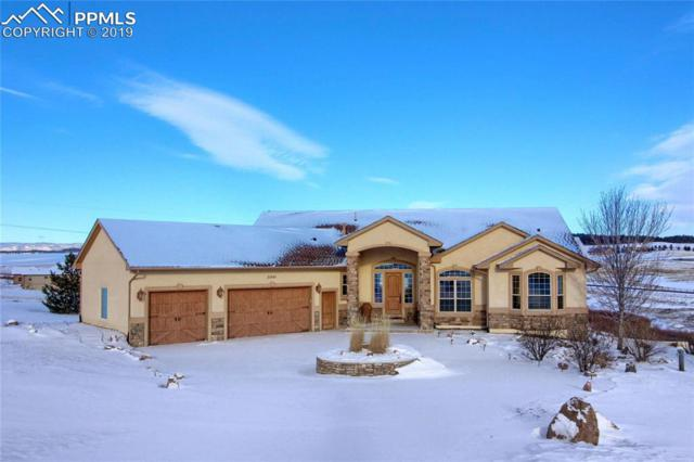 20440 Taversham Court, Monument, CO 80132 (#9720036) :: Jason Daniels & Associates at RE/MAX Millennium
