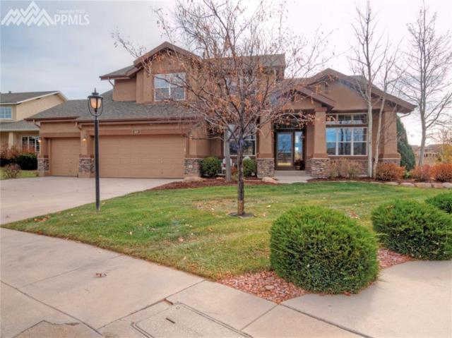 2671 Willow Grass Court, Colorado Springs, CO 80920 (#9722323) :: 8z Real Estate