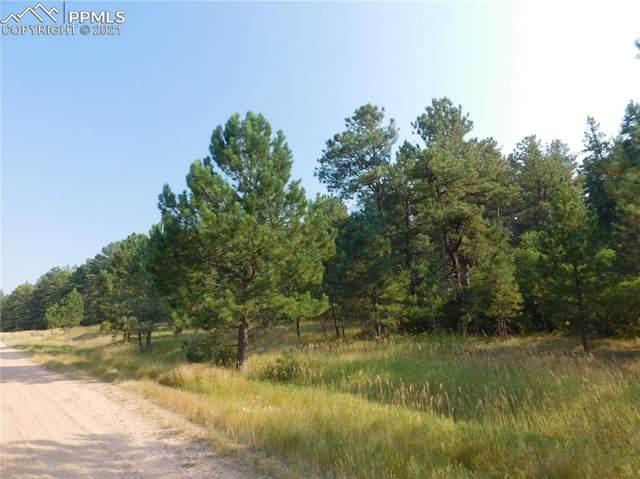 4668 Comanche Drive, Larkspur, CO 80118 (#9722847) :: Springs Home Team @ Keller Williams Partners
