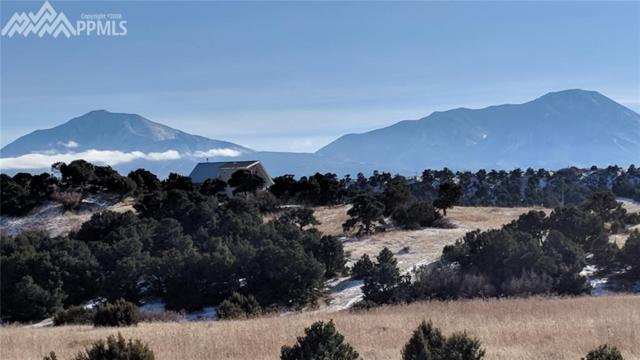Arapahoe Drive, Walsenburg, CO 81089 (#9723554) :: 8z Real Estate
