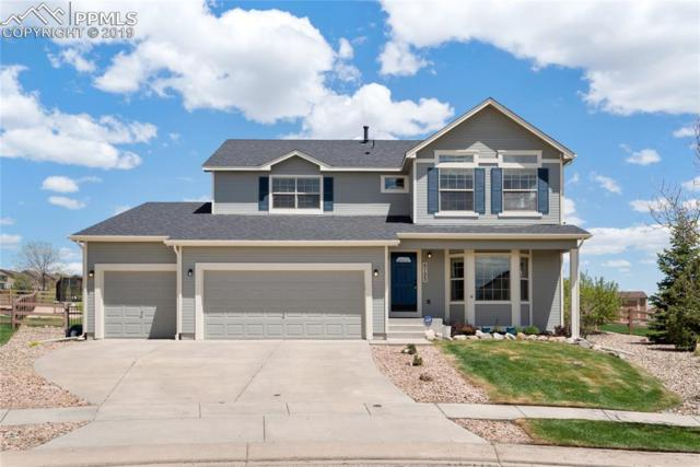 8725 Roaring Fork Drive, Colorado Springs, CO 80924 (#9726958) :: The Kibler Group