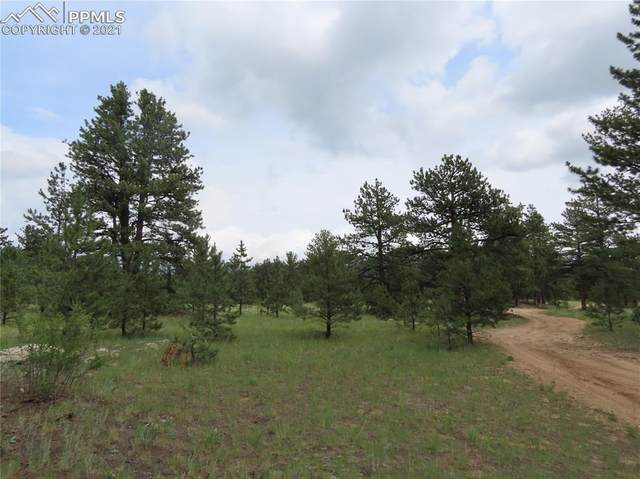000 Forest Service 230 Road, Lake George, CO 80827 (#9728836) :: Action Team Realty