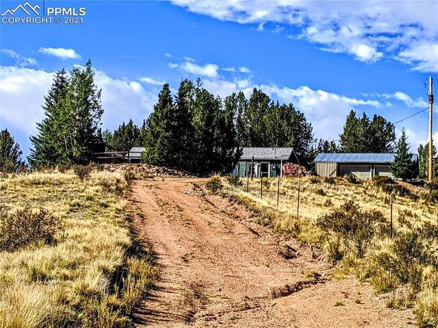 10466 S Highway 67 Highway, Cripple Creek, CO 80813 (#9729149) :: The Harling Team @ HomeSmart
