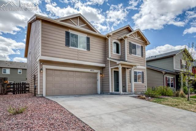 4035 Creek Legend View, Colorado Springs, CO 80911 (#9730267) :: The Kibler Group