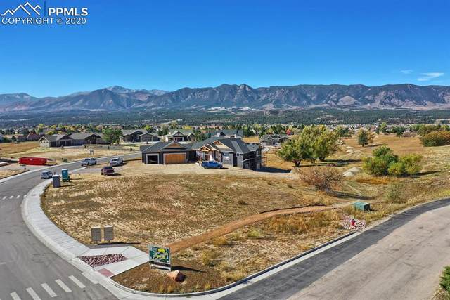 14386 Spyglass Hill Place, Colorado Springs, CO 80921 (#9731123) :: Finch & Gable Real Estate Co.