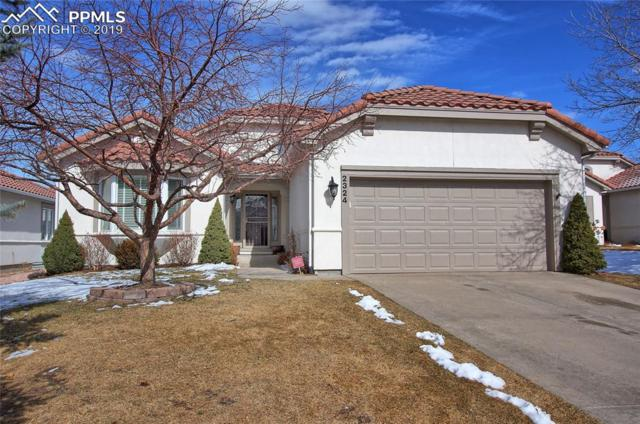 2324 Winstead View, Colorado Springs, CO 80920 (#9733100) :: The Daniels Team