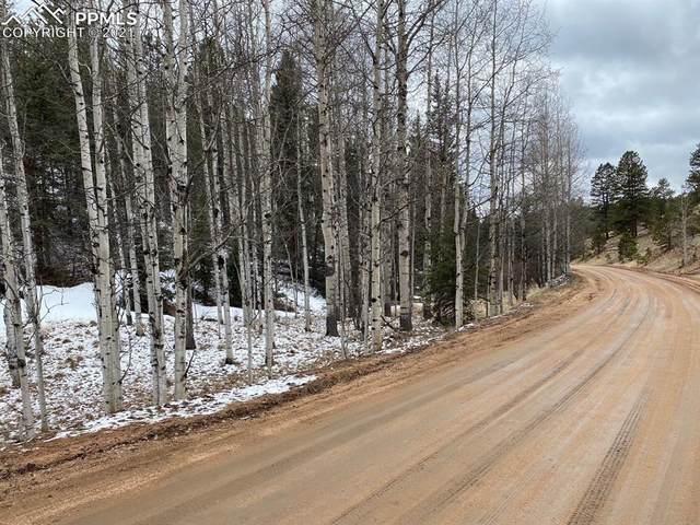 138 Snowberry Creek Drive, Florissant, CO 80816 (#9733388) :: The Daniels Team