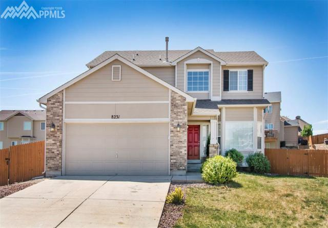 8231 E Cassabella Court, Fountain, CO 80817 (#9735738) :: 8z Real Estate