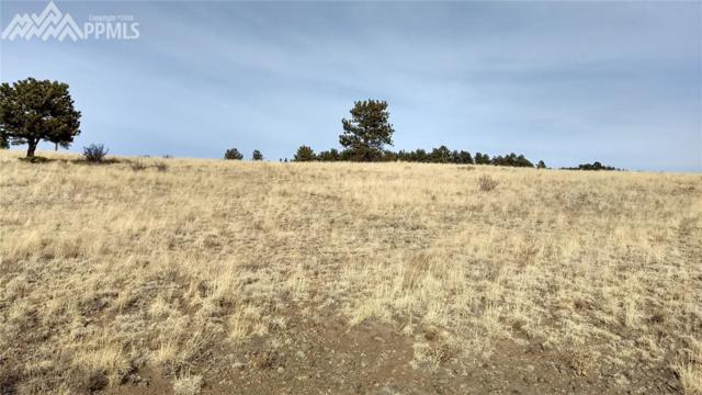 4454 County 71 Road, Guffey, CO 80820 (#9737124) :: Action Team Realty
