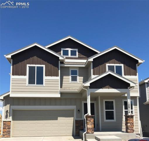 10914 Aliso Drive, Colorado Springs, CO 80925 (#9737672) :: Perfect Properties powered by HomeTrackR