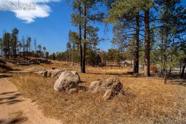 13455 Ravine Drive, Colorado Springs, CO 80908 (#9741194) :: 8z Real Estate