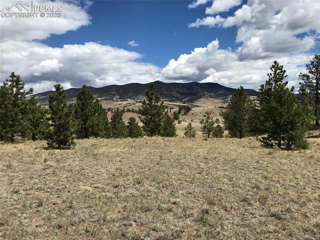 TBD Fawn Drive, Guffey, CO 80820 (#9741701) :: Finch & Gable Real Estate Co.