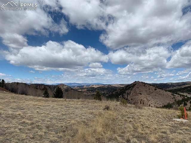 2250 County Road 1, Cripple Creek, CO 80813 (#9743469) :: CC Signature Group