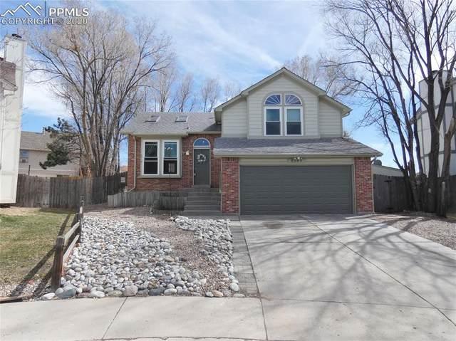 8545 Salsifa Terrace, Colorado Springs, CO 80920 (#9744378) :: Colorado Home Finder Realty